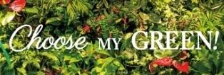 5月はGM(グリーンマンス) お気に入りの緑を見つけよう!