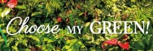 【巻頭特集】5月はグリーンマンス。私の緑をみつけよう!